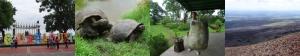von li. nach re.: Guayaquil am Malecon; Galapagos-Schildkröten auf Santa Cruz, mein neuer Panzer; Insel Isabela